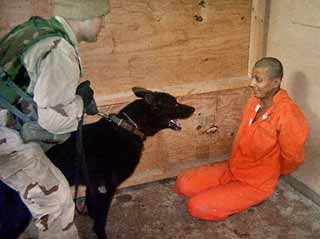 abu_prison_dogmaul.jpg
