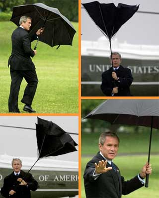 bush_umbrella.jpg
